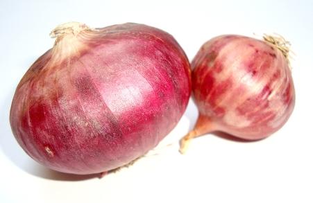 onions_f1PpVPu_