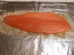 salmon pieces