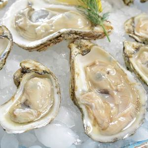 oysters sucked